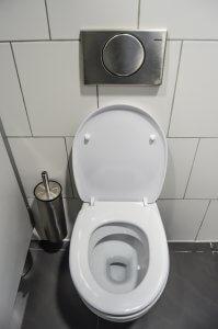 open toilet lid